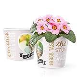 30 Hochzeitstag Geschenk Blumentopf (ø16cm) | Perlenhochzeit Deko mit Herz-Bilderrahmen für ein Foto (10x15cm) | Glücklich verheiratet seit 30 Jahren