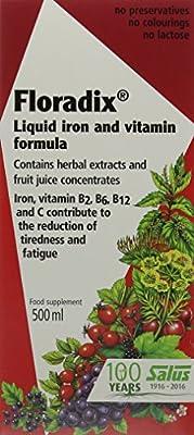 Floradix Liquid Iron Formula 500ML
