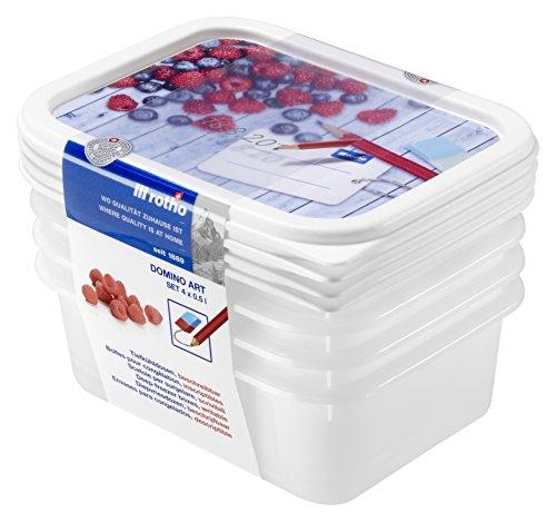Rotho Domino 4er Set Vorratsdosen, Kunststoff (BPA-frei), , 4x 0.5 Liter (15,7 x 11,8 x 5,3 cm) (Vorratsdosen 5 Set Von)