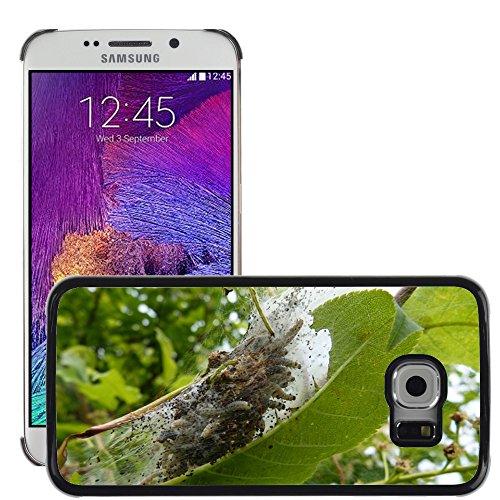 Nur Handy HOT STYLE HANDY PC Hard Case Cover//m00139210Black Cherry Caterpillar gesponnen Garn//Samsung Galaxy S6Edge (passt nicht für S6) -