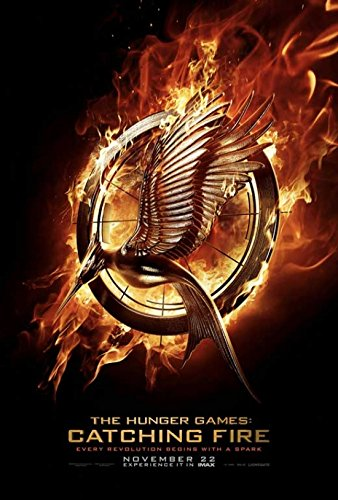The Hunger Games: Catching Fire Movie Poster (27,94 x 43,18 cm)