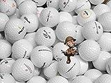 golf ball hunter - gebrauchte Markenmix Golfbälle Lakeballs AAA-AA Qualität (Weiß, 100)