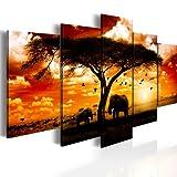 BILD AUF LEINWAND + 5 TEILIG + AFRIKA SONNENUNTERGANG PANORAMA + Wandbilder 051378 + 100x50 cm