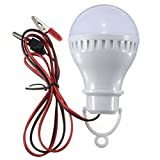 Pegasus E27 2.5W 5730 Pure White LED Lampen Solar Lampen Home Camping Licht 12V