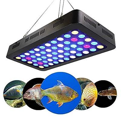 Lumière d'aquarium de 165W LED (lumière de corail de spectre complet de Dimmable LED) pour le réservoir d'eau de mer bleu-blanc de récif d'eau salée de récif marin (avec chaîne de marguerites)
