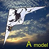 FZSWD Cerf-volant Haute qualité 2.7 m sorcière double ligne cascade kite surf en plein air amusement sports parafoil kiteboard barre cerf-volant led falcon cerf-volant