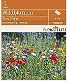 Wildblumen Ohne Gräser von Flora Elite