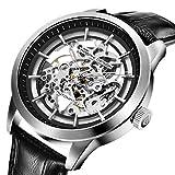 Pagani diseño automático Reloj de Hombre con Mecanismo de Esqueleto Transparente-Impermeable Hombres Reloj
