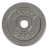 Delta Elite Döküm Plaka, Gri, 2 x 2,5 kg