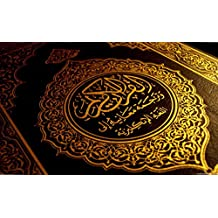 Quran: the book of the Creator (English Edition)