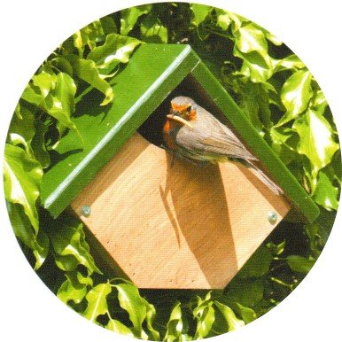Robin or Wren Nest Box. Designed for the Nesting Habits of these Garden Birds from CJ Wildlife