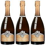 Weingut Reichsrat von Buhl Riesling Sekt 2014/2015 Trocken (3 x 0.75 l)