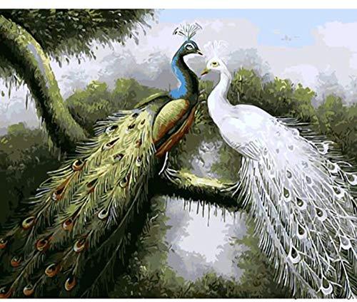 s Ölgemälde Durch Zahlen Dekorative Leinwand Wandmalerei Kalligraphie Pinsel Farbe Nach Anzahl Pfau Zeichnung Handwerk Rahmenlos ()
