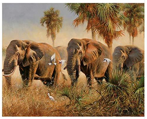 Elefantes salvajes Animal DIY Pintura Digital Por Números Arte de la Pared...