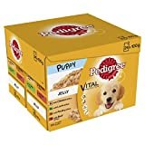 Pedigree Puppy Pouches Meat Selection in Jelly, 24 x 100 g, Pack of 2 (Total 48 Pouches)