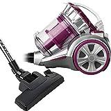 Dunlop - 871125210167 Beutelloser Bodenstaubsauger, Silver/Pink
