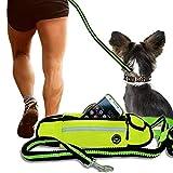 JogDog hochwertiges Set:3-in-1 elastische Hunde-Leine,Bauch-Tasche,Freihand,Sicherheit Wasserdicht Jogging Gürtel Reflektor & Musik Ausgang Freihändig Laufen Hüft-Beutel