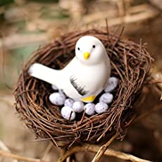 Shopystore Bird Send Random Artificial Nest Bird Eggs Miniature Fairy Garden Home Houses Decoratio