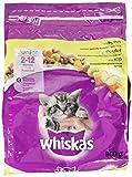 Whiskas Katzenfutter Trockenfutter Kitten für Junior Kätzchen mit Huhn, 800 g
