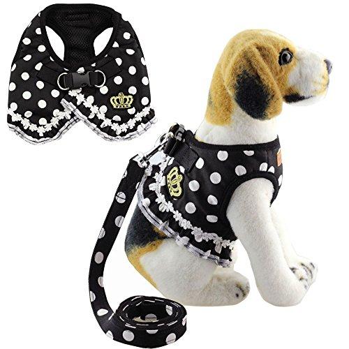 Bolbove Pet Süße Dots Spitze-Weste mit Mesh Geschirr und Leine-Set für Katzen Hunde, Small, Schwarz - Dot Kleid Pudel