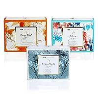 TeaTreasure Silver Needle, Belly Blast and Oolong Tea - Assortment Pyramid Tea Bags