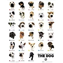 Empire - Póster de razas de perros (incluye artículo adicional)