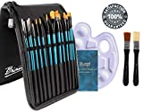 #6: Bianyo Artist Paint Brush Set with Palette and Zippered Black Carry Pouch