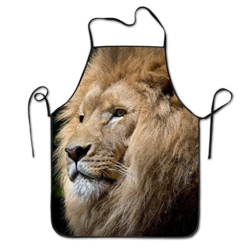 ica-African Personalized Funny Great Home Present for Kitchen BBQ Cook Chef Apron Cooking Professional Adults Bibs Gifts ()