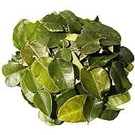 Kaffir Lime Leaves, Fresh from Frozen, 80g