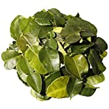 Blätter der Kaffernlimette - Tiefgekühlt frisch - 80 g