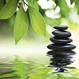 Artland Qualitätsbilder I Glasbilder Deko Glas Bilder 30 x 30 cm Wellness Zen Stein Foto Grün A6GU Steinpyramide Wasseroberfläche Blätter