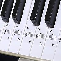 Neewer® Adesivi di Note Musicali per Pianoformte e Tastiera Set Completo di Adesivi e Istruzioni per 49, 61, 88 Tasti Bianchi & Neri - Istruzione Caso