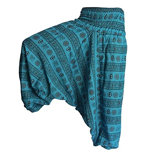 ali-harem-house-mens-indian-alibaba-om-gypsy-hippie-yoga-meditation-harem-pants-1