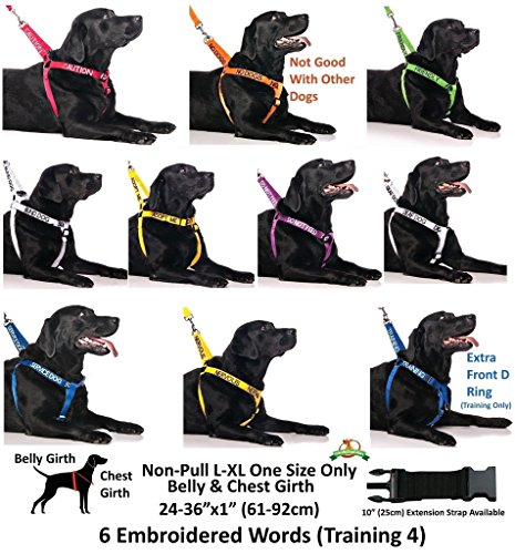 FriendlyDogCollars