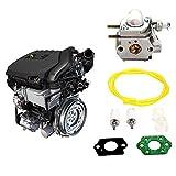 332Page Ann carburatore wt973con candela di accensione a benzina Filtro Kit adatto per Walbro WT 973Troy Bilt tb21ec tb22ec tb32ec tb42bc tb80ec