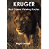 Kruger Best Game Viewing Routes