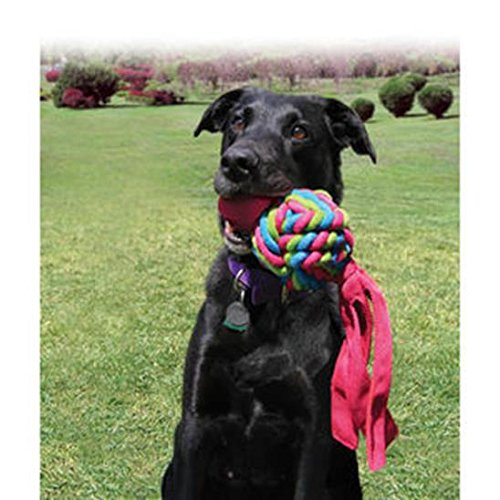 KONG-Wubba-Weaves-Dog-Toy-Large