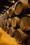 Walter Bibikow / DanitaDelimont – Spain Bodegas Gonzalez Byass Winery Casks Photo Print (45,72 x 60,96 cm)