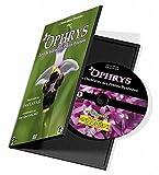 OPHRYS, Les orchidées des Petites Pyrénées