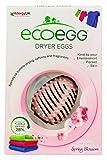 Ecoegg EEDE40SB- Uovo per asciugatrice, profumazione Spring Blossom