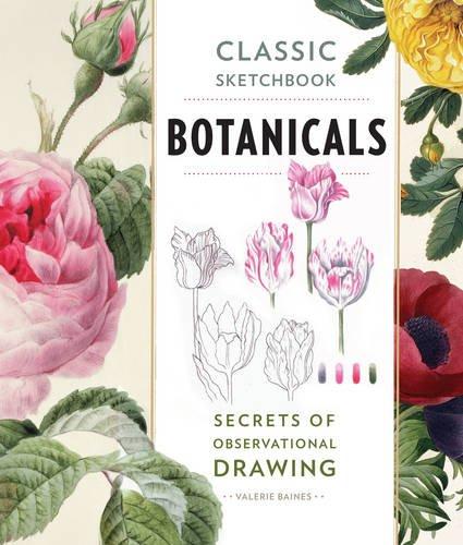 Download Classic Sketchbook Botanicals Secrets Of Observational Drawing PDF