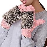 OHQ Winter Gloves Women Mittens Cartoon Knitted Hedgehog Glove (Rose)