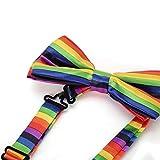 Seta finire Moda Cravatta a farfalla. Dicky pre-legato elastico per matrimoni (Arcobaleno orizzontale)