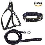 Petender Hundeleine, Geschirr und Halsband, verstellbar und beständig, geflochtenes Nylon-Leinen-Set für kleine/ mittelgroße Hunde–3er-Pack