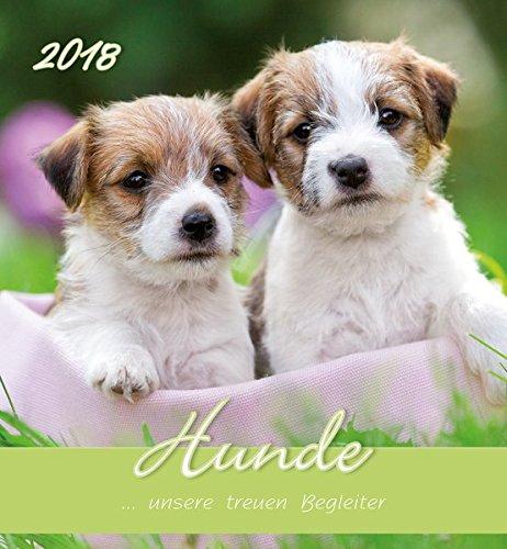 Hunde 2018. Postkartenkalender