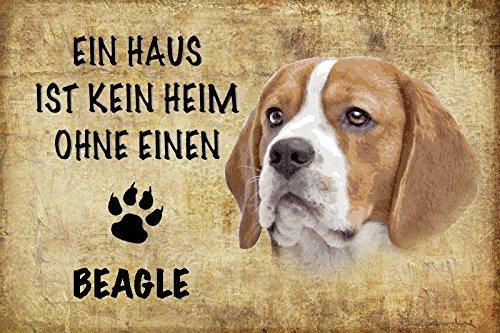 ComCard Ein haus ist kein heim ohne einen Beagle hund schild aus blech, metal sign, tin