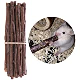 Ardilla ramas de árbol de madera Juguetes de masticar de ratones de hámster Rat Gerbil ratones pequeños animales