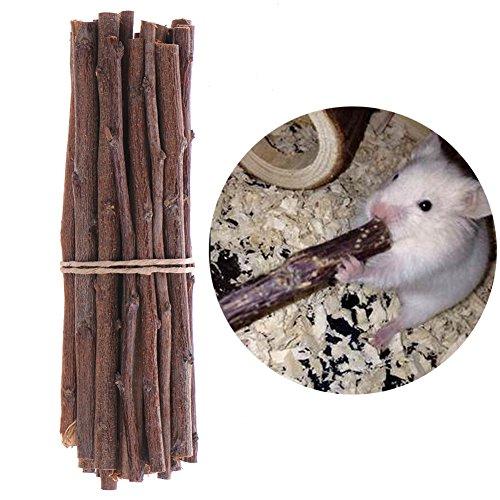 Ardilla Árbol Ramas Masticar Juguetes de madera para...