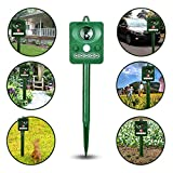 Workingda Solar Ultrasonic Animal Repeller, Wild and Pest Deterrent Repellent, Activated with Motion