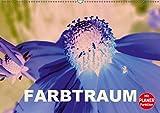 FARBTRAUM (Wandkalender 2019 DIN A2 quer): Abstrakte Blütenbilder (Geburtstagskalender, 14 Seiten ) (CALVENDO Natur)